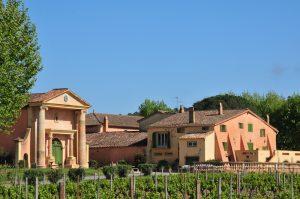 Bertaud Belieu vineyard Gassin