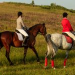 Horse Riding and Polo in St Tropez