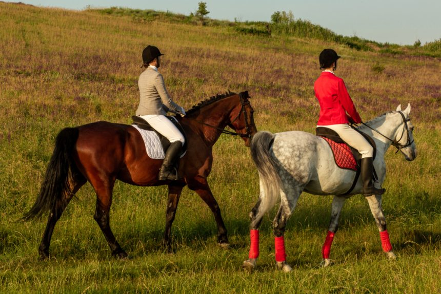Horse Riding and Polo in St Tropez: Best Spots