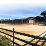 St Tropez Polo Club