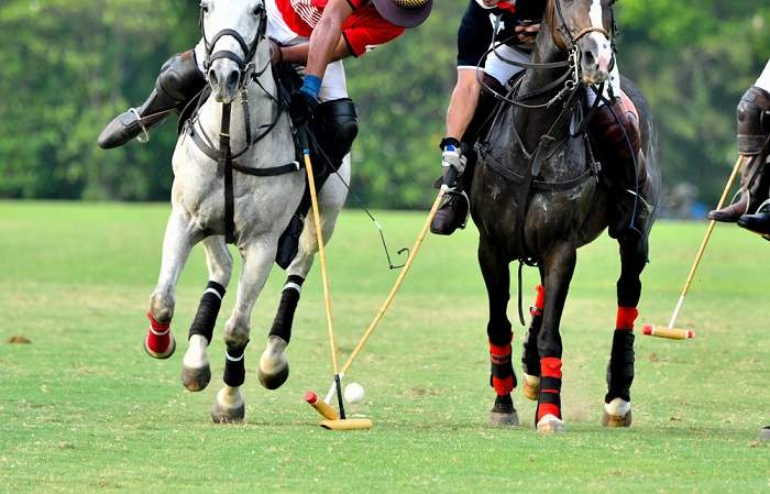 Two polo players on horses in the polo club of St Tropez